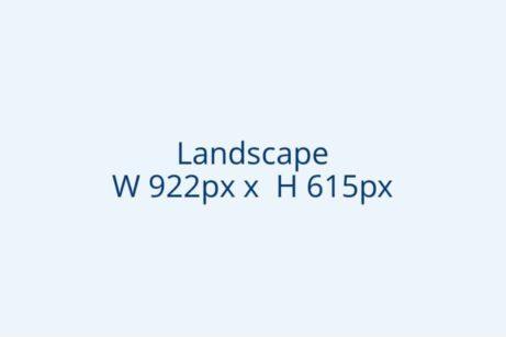 Landscape 922x615